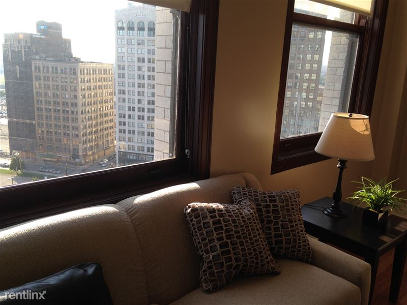 Detroit Flex-Lease/Furnished @ The David Whitney - 5 - City View