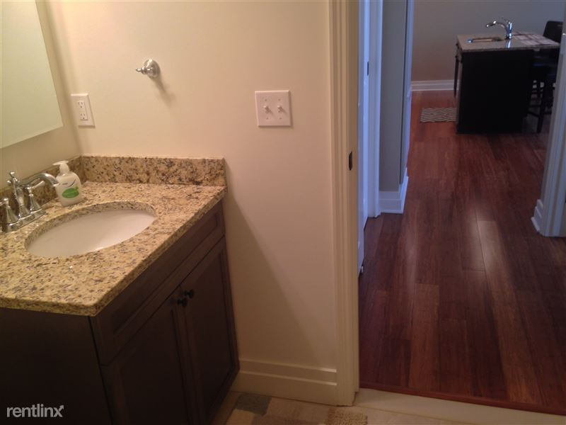Detroit Flex-Lease/Furnished @ The David Whitney - 16 - 15-Bath sink and hallway