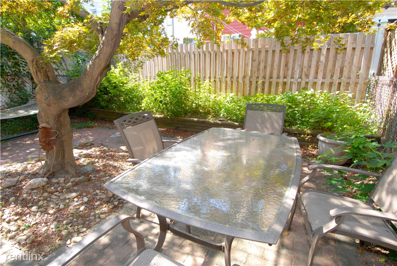 Charming, private backyard with shady, gorgeous Japanese maple tree. Yard shared with only one other tenant.