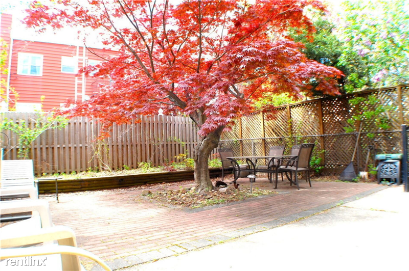 Charming backyard with shady, gorgeous Japanese maple tree. Yard shared with only one other tenant.