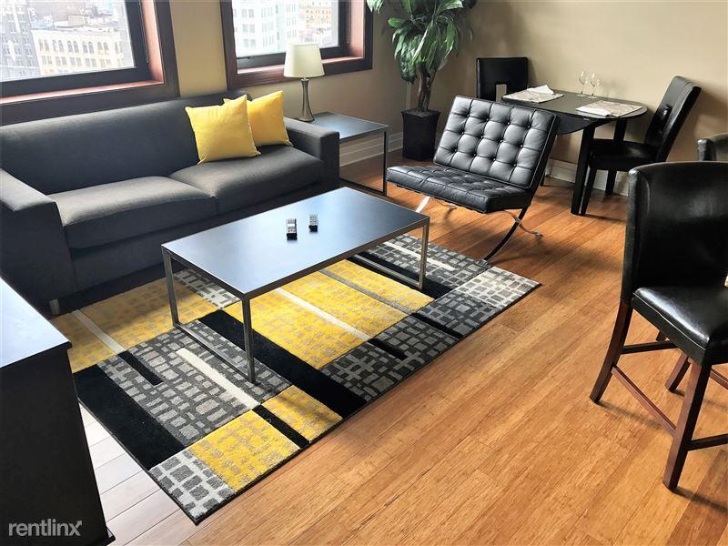 Furnished/Turnkey Apartments-Detroit & Suburbs - 3 - IMG_2160