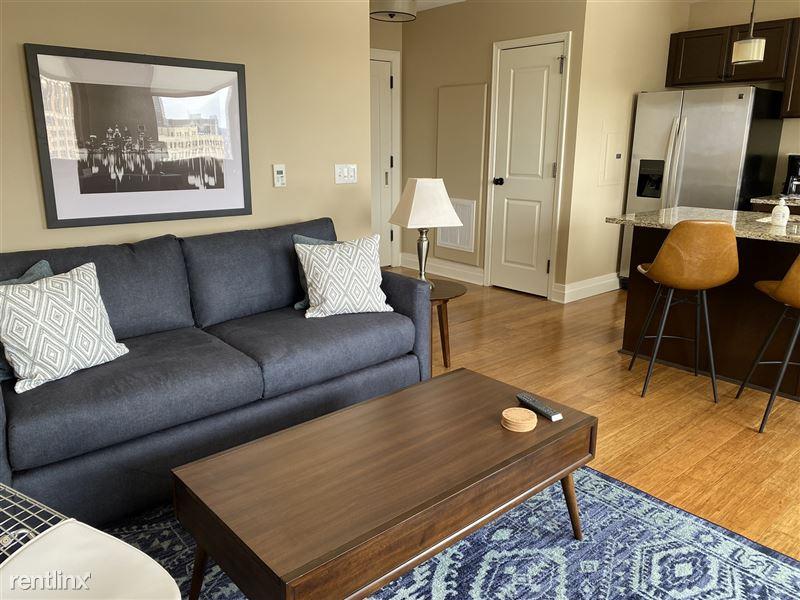 Furnished/Turnkey Apartments-Detroit & Suburbs - 4 - IMG_5950