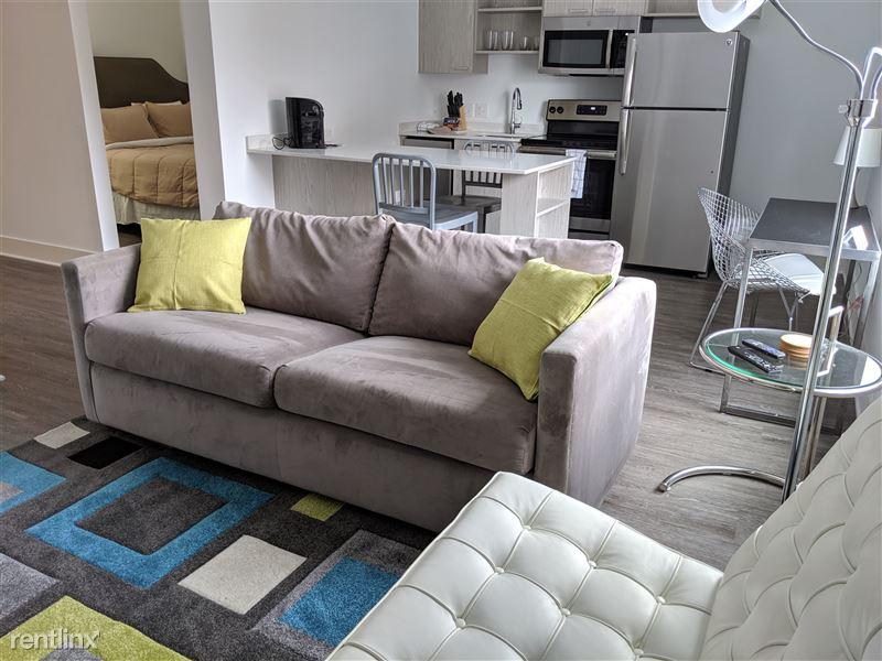 Furnished/Turnkey Apartments-Detroit & Suburbs - 6 - IMG_20191113_141639