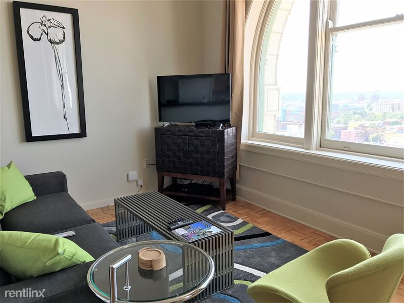 Furnished/Turnkey Apartments-Detroit & Suburbs - 7 - IMG_2991
