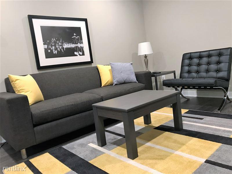 Furnished/Turnkey Apartments-Detroit & Suburbs - 11 - IMG_0067