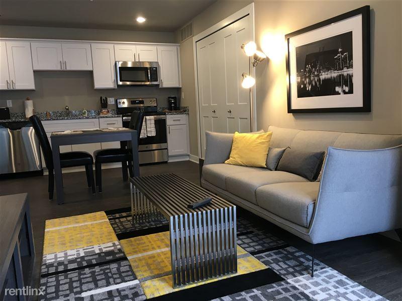 Furnished/Turnkey Apartments-Detroit & Suburbs - 12 - IMG_4452