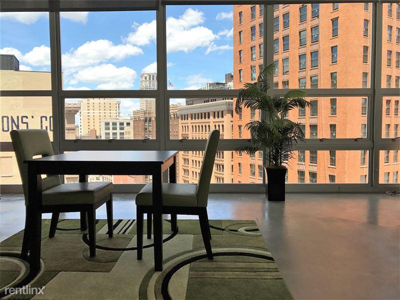 Furnished/Turnkey Apartments-Detroit & Suburbs - 13 - IMG_2154