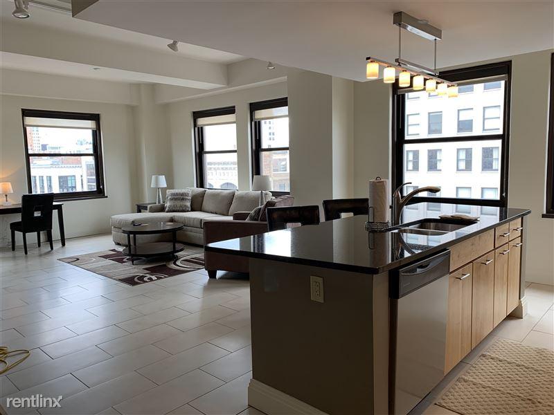 Furnished/Turnkey Apartments-Detroit & Suburbs - 2 - IMG_1164