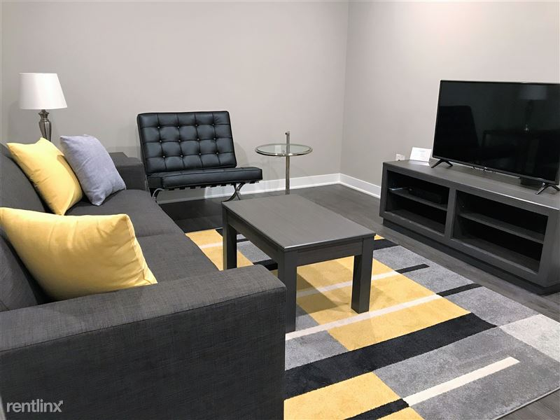 Furnished/Turnkey Apartments-Detroit & Suburbs - 7 - IMG_0037