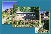 sophie plaza