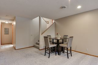 Lower level has great open spaces & new carpet