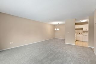 Enormous space with brand new carpeting