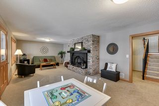 Lower level family room.   Walk out to back yard!