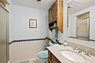 Lower level 3/4 bath