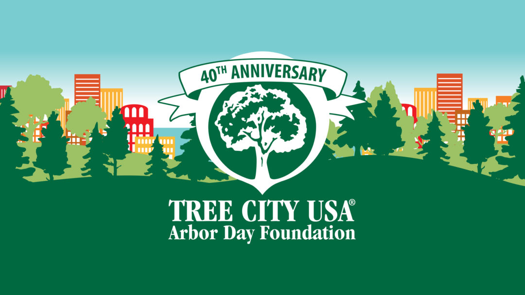 40th Anniversary of Tree City USA for Longmont 3
