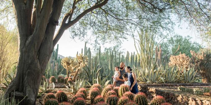 Road Trip to California: From Phoenix to the Coast | Visit California