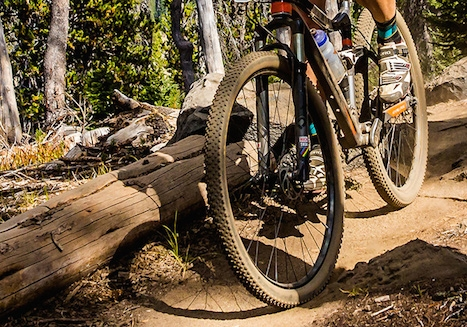 Three U.S. riders claimed medals at the 2014 UCI Masters Mountain Bike World Championships.