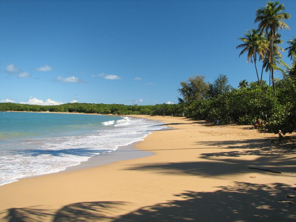 Puerto rico tourist attractions for nature lovers dating 5