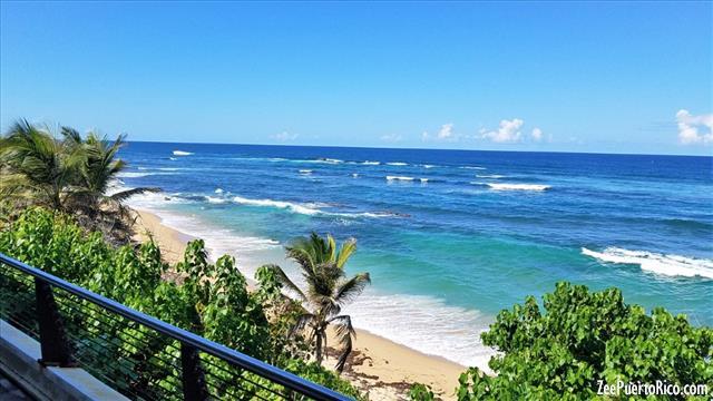 Puerto Rico Seafood Restaurants