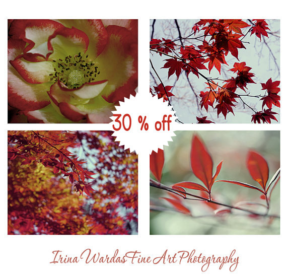 botanical photography set 4 11x14 8x10 nature pictures red mint artwork living room - Living Room Wall Decor Sets