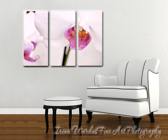 Canvas Wall Art | Vertical Three Panel | Orchid in Magenta White