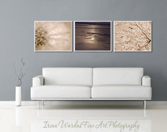 Beige And Brown Modern Photography Set 3 11x14 Prints Dandelion Neutral Wall Art Nature