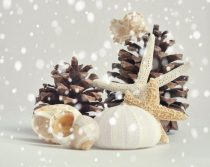 Beach holiday wall art, Christmas art print seashell starfish pine cones brown beige white nautical cottage chic wall art, beach lovers gift