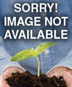 5a9ec74325977df4b799b00122fefb7a10c885e1 7712ac27cbff53f92f769c4509432c1729e3e282 6333e26d315254e4e8bfe70891832f58aeb99b5a