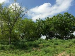 53 sunny vale, mathis, TX 78368
