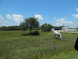 922 Highway 183 Hwy, Refugio TX 78377