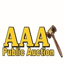 AAA Public Auction Logo