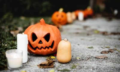 Halloween shopping season for halloween costumes, decorations, candy, and more