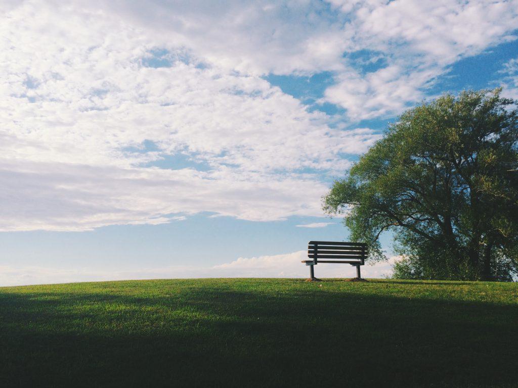 sun shining on park bench