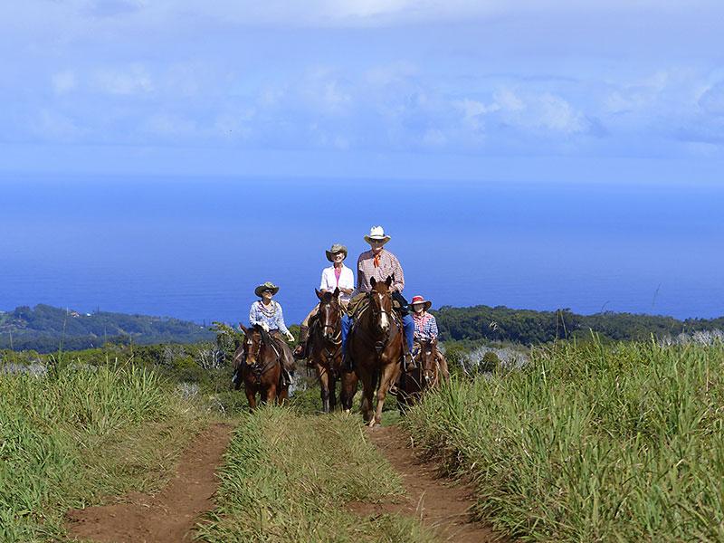 Upcountry Horseback Riding