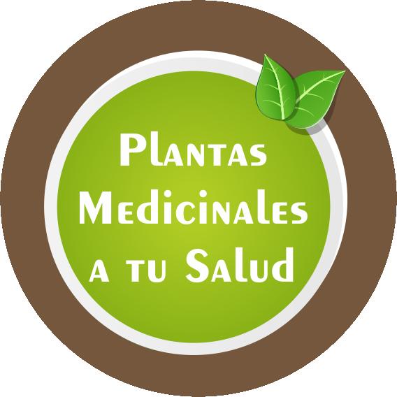 PLANTAS MEDICINALES A TU SALUD QUEBRACHO BLANCO