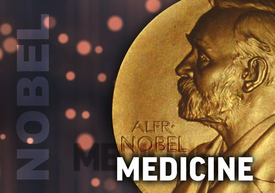"2014 Nobel Prize in Medicine: Discovering the Brain's ""Inner GPS"""