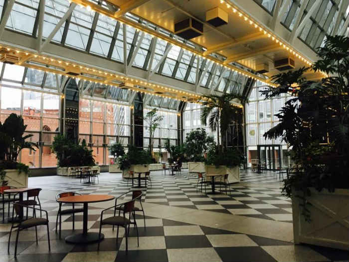 Revive Your Winter Workout: Free Yoga at the Wintergarden!