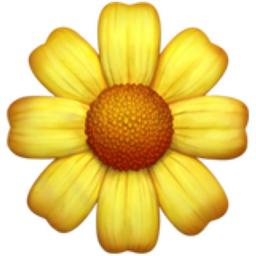 Image result for flower emoji