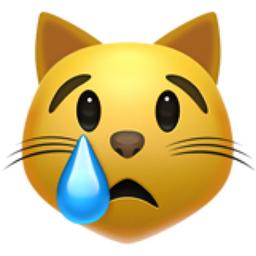 Crying Cat Face Emoji (U+1F63F)