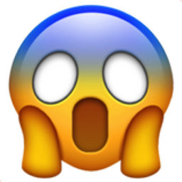 Image result for surprised face emoji
