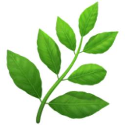 herb emoji u1f33f