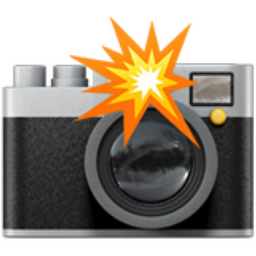 Camera With Flash Emoji U1f4f8