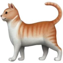 Cat Emoji (U+1F408)