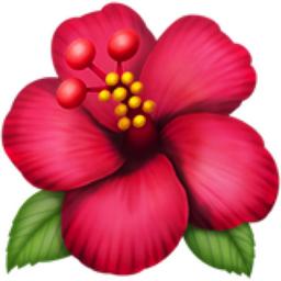 Hibiscus Emoji U1f33a