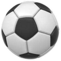 41 Chronological Soccer Ball