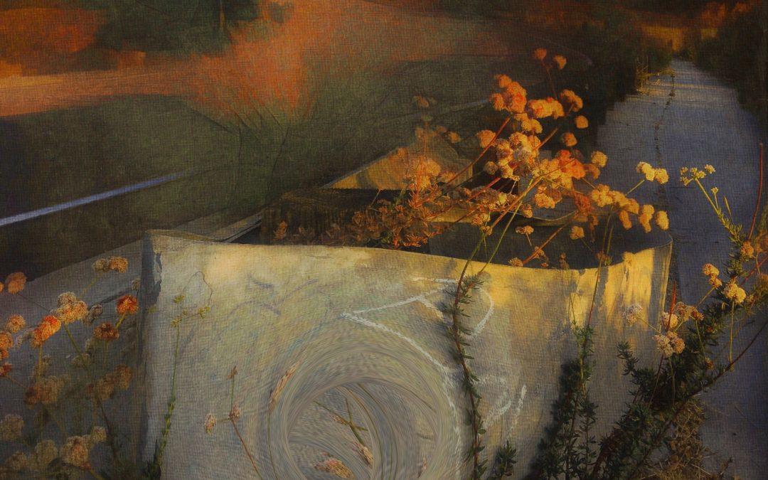 {en vedette} Barbara duBois ~ Alternative Landscape XXXVIII