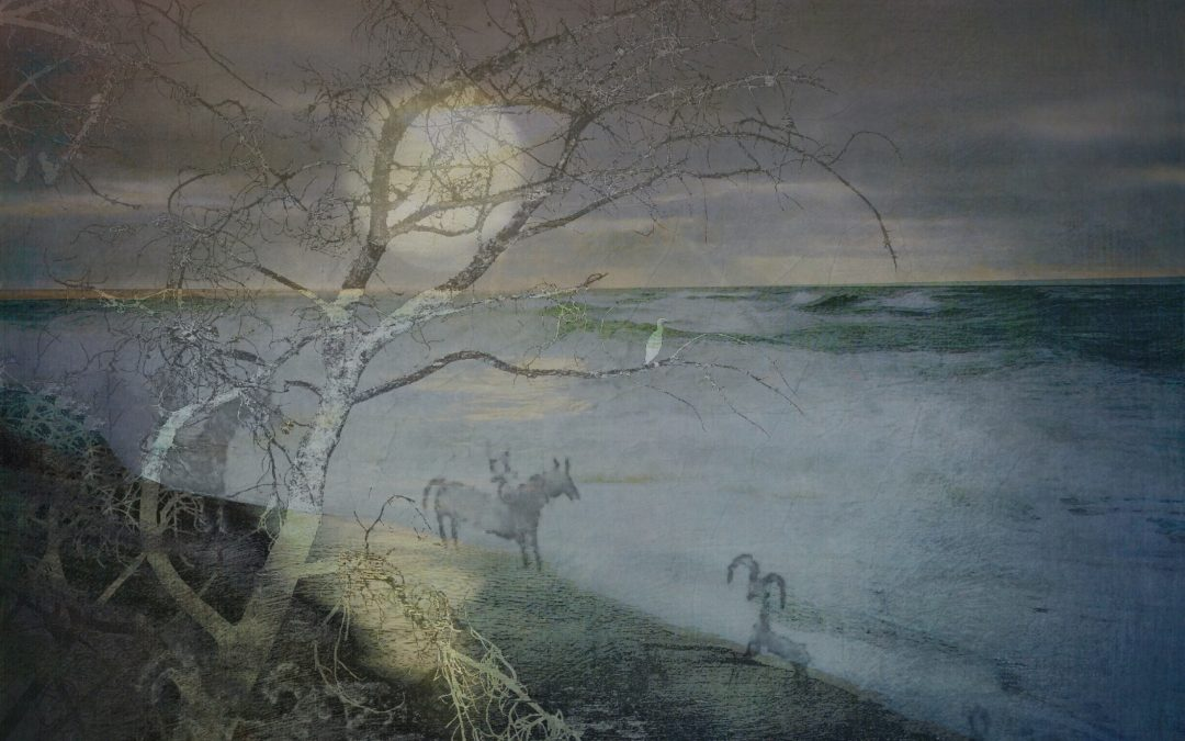 Barbara duBois ~ Alternative Landscape LXXXIX