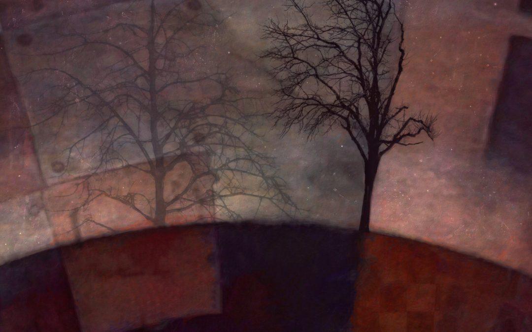 Barbara duBois ~ Alternative Landscape XCIV