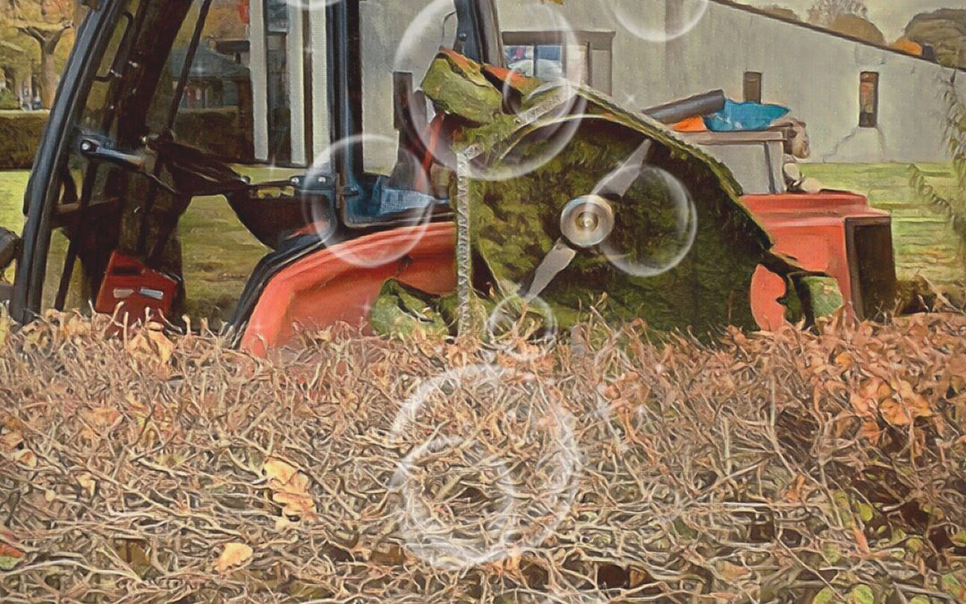 jan uiterwijk ~ Mowing the grass, digging the weeds, maintaining our little bubble