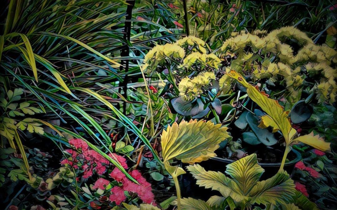 Jan Uiterwijk ~ Eden, Garden of (frontgarden)